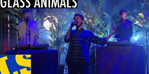 DVR REWIND: Glass Animals on Letterman